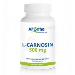 L-Carnosin 90 Kapseln